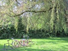BicycleArpeggio1
